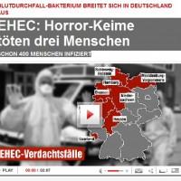 Ausschnitt aus der Onlineseite von Bild.de